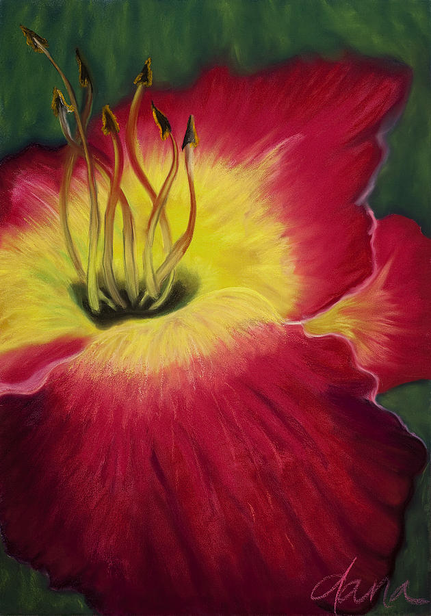 Lily Painting - Red Day Lily by Dana Strotheide