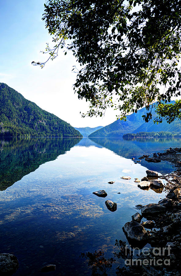 Reflection on Lake Crescent Vertical by Sarah Schroder