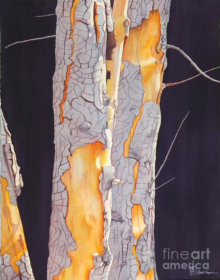 Watercolor Painting - River Birch At Lynx by Robert Hooper