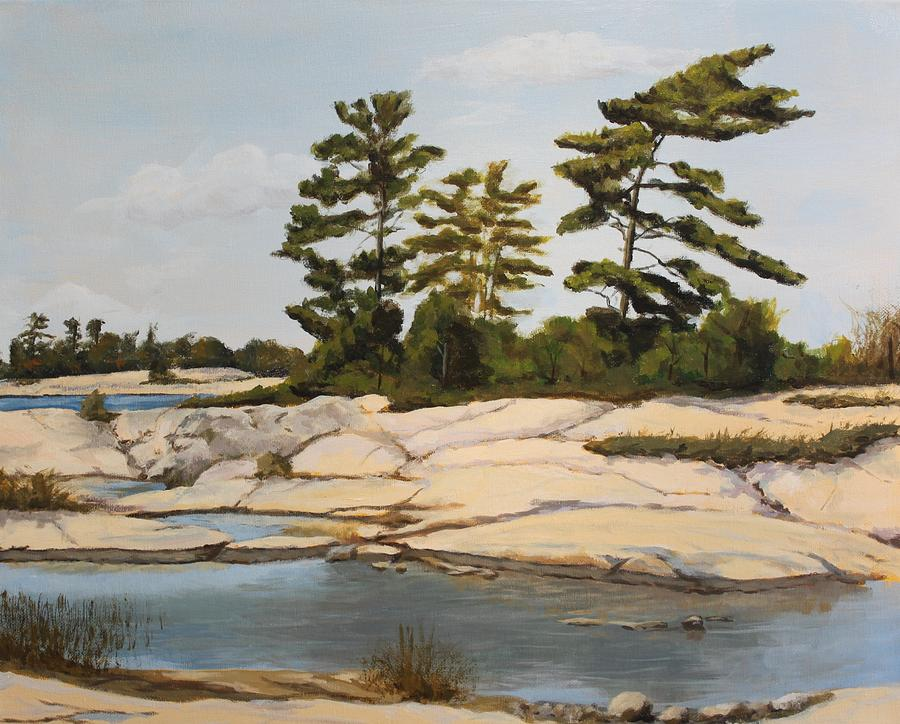 Landscape Painting - Rock Ponds. Lost Bay. Beausoleil by Humphrey Carter