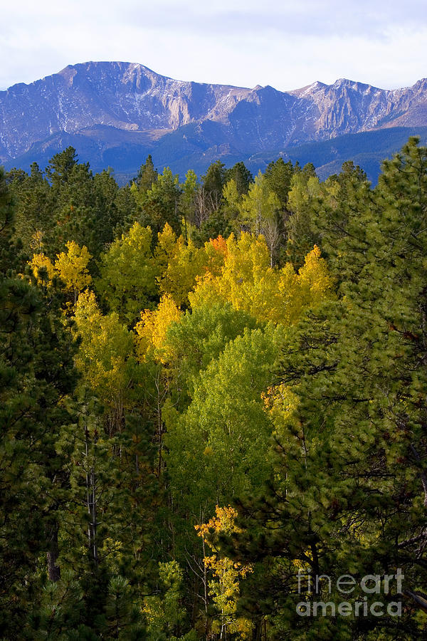 Rocky Mountain Autumn Photograph