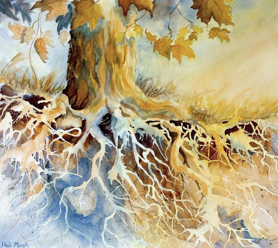 Roots Of Tree Painting - Roots by Paula Marsh
