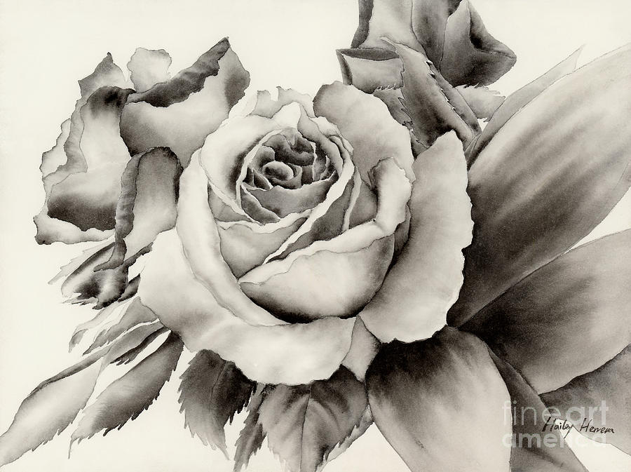 Watercolor painting rose bouquet by hailey e herrera