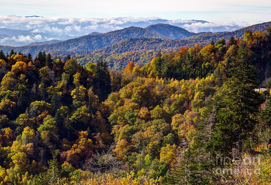 Smokies Photograph - Smoky Mountain Color II by Douglas Stucky