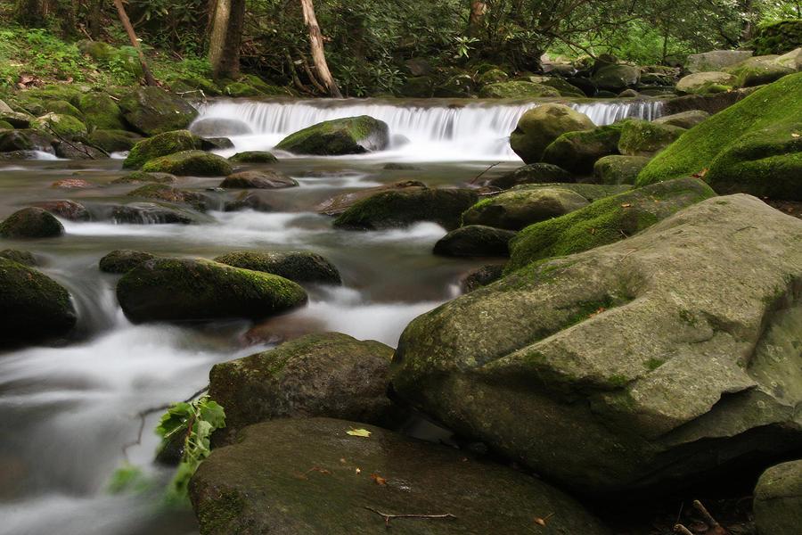 Smoky Photograph - Smoky Mountain Stream by Cindy Haggerty