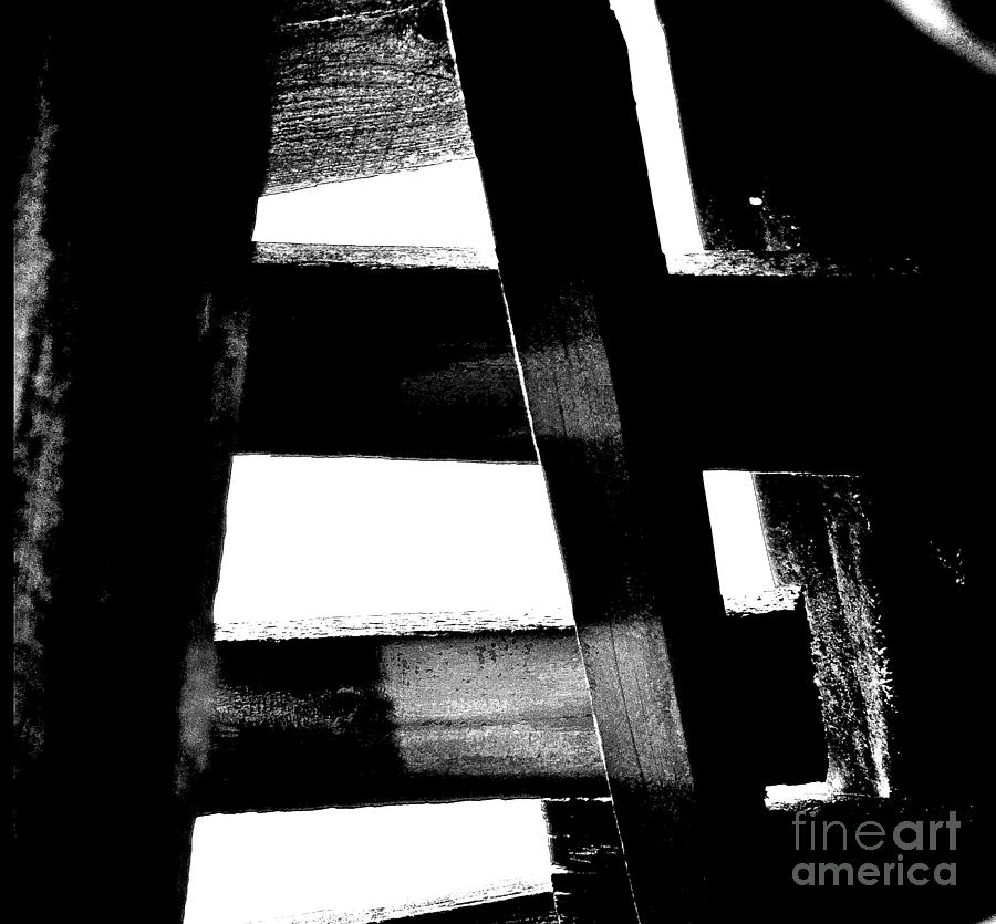 Abstract Photograph - Soundly Grounded by Lauren Leigh Hunter Fine Art Photography