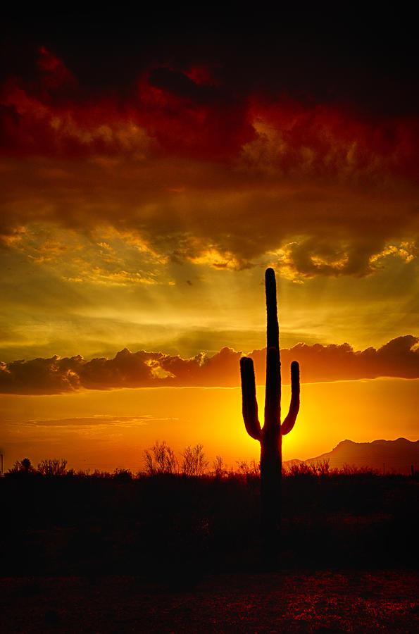 Sunset Photograph - Southwestern Style Sunset  by Saija  Lehtonen