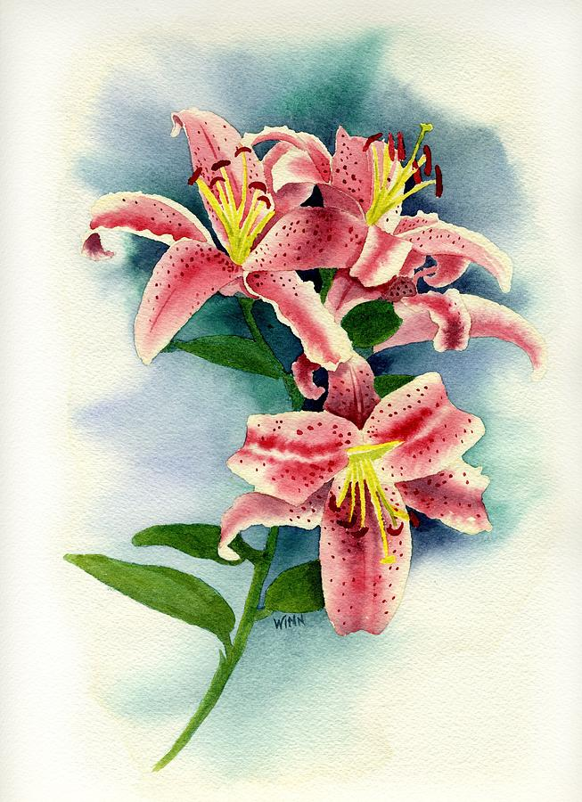 stargazer lilies painting by brett winn, Natural flower
