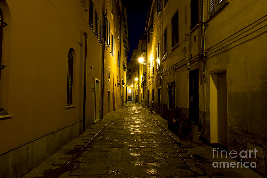 Street Alley By Night Photograph by Mats Silvan