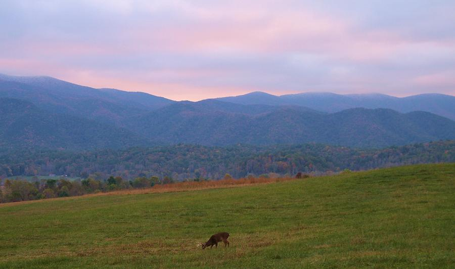 Sunrise In Cades Cove Photograph - Sunrise In Cades Cove by Dan Sproul