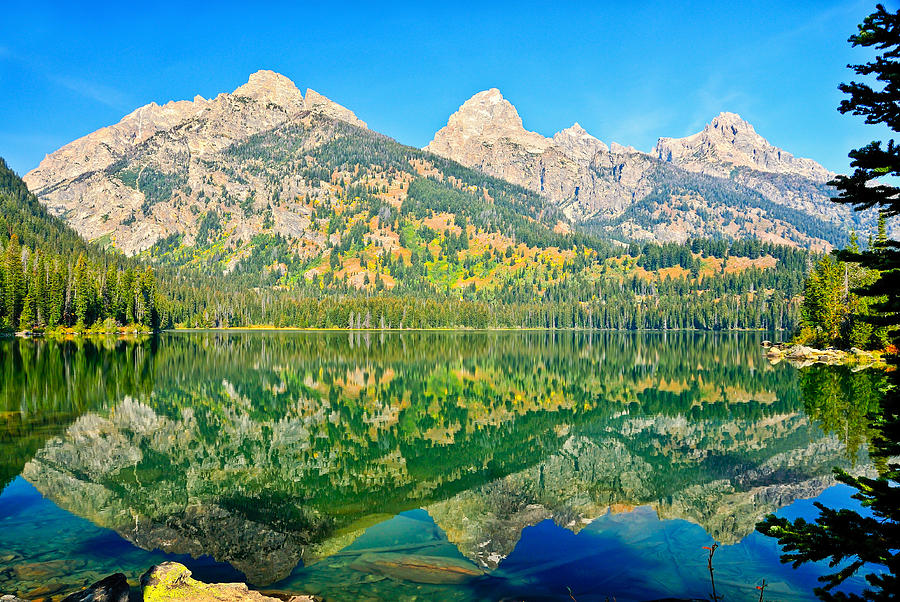 Grand Teton National Park Photograph - Taggart Lake by Greg Norrell