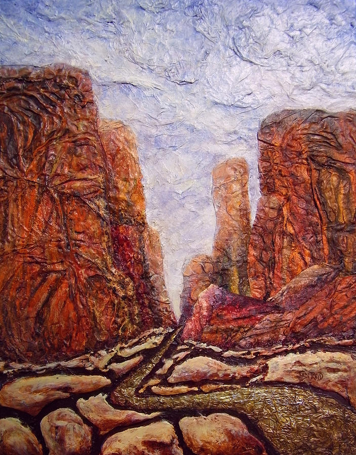 Canyonlands Mixed Media - Through The Maze by Jan Reid
