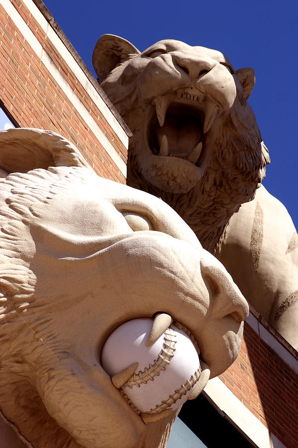 Detroit Photograph - 2 Tigers At Comerica Park by John McGraw