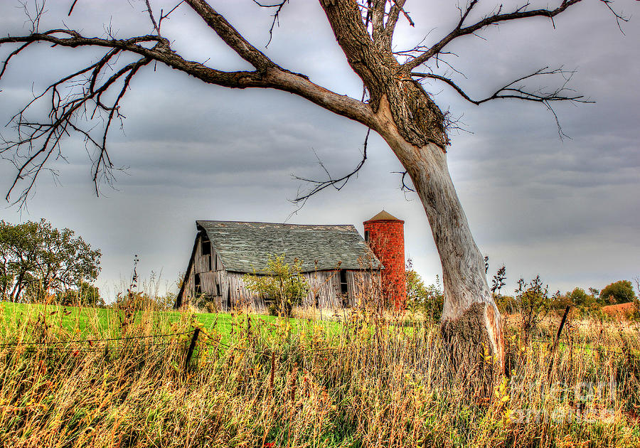 Barn Landscape Photograph - Timeless by Thomas Danilovich