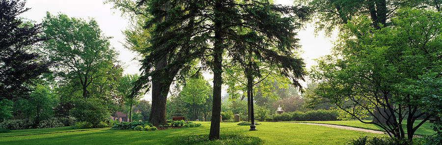 Horizontal Photograph - Trees In A Park, Adams Park, Wheaton by Panoramic Images