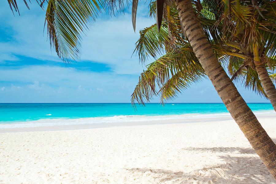 Tropical Paradise Beach HD Wallpaper | 1920x1080 | ID:56315 ...