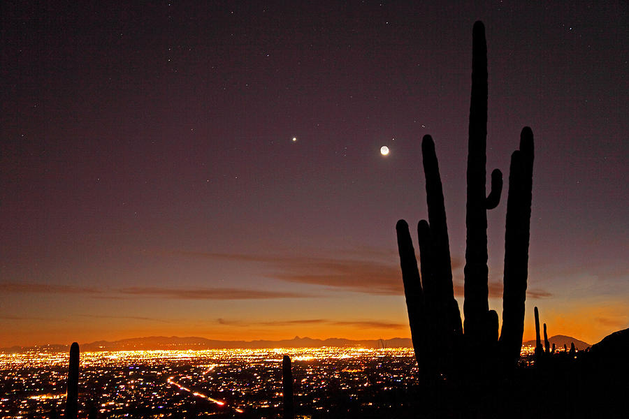 Tucson at Dusk by Susan Rovira