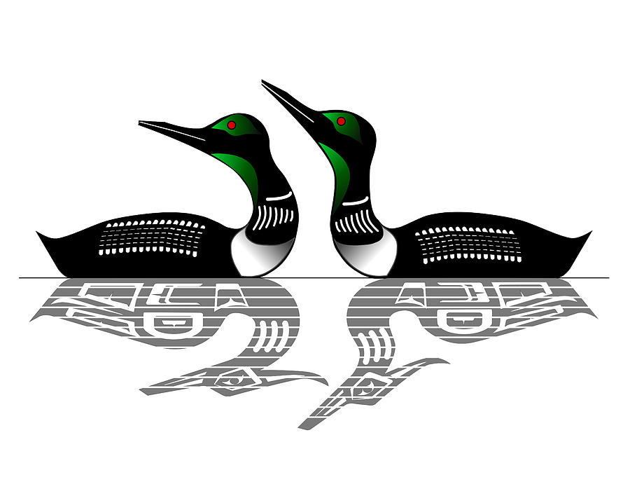 two loons reflected drawing by fred croydon