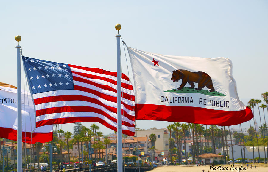 Barbara Snyder Painting - United States And California Flags by Barbara Snyder