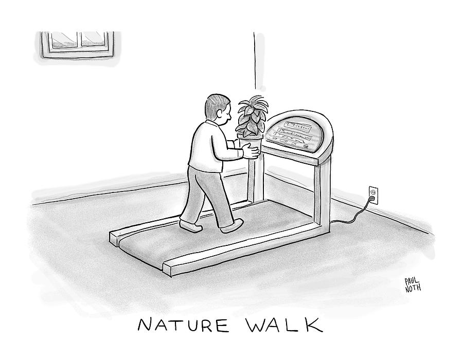 New Yorker November 7th, 2016 Drawing by Paul Noth