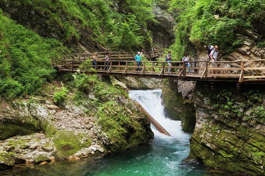 Slovenia Photograph - Vintgar Gorge, Slovenia by Ken Welsh