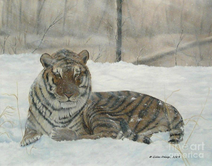Tigers Painting - Waiting Out The Storm. by Gilles Delage