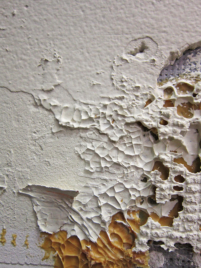 Wall Photograph - Wall Abstract by Mary Bedy