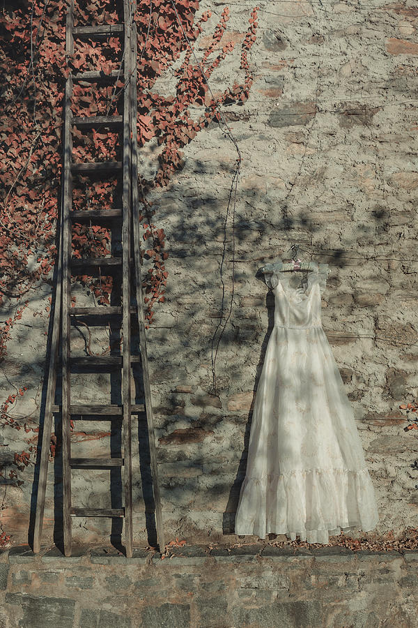 Dress Photograph - Wedding Dress by Joana Kruse