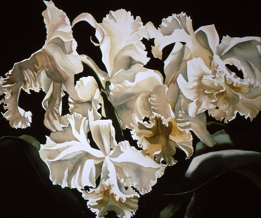 Flower Painting - white Cattleya orchids by Alfred Ng