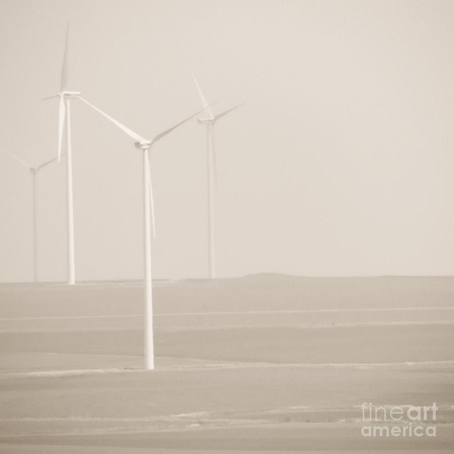 Agriculture Photograph - Windmills by Gabriela Insuratelu