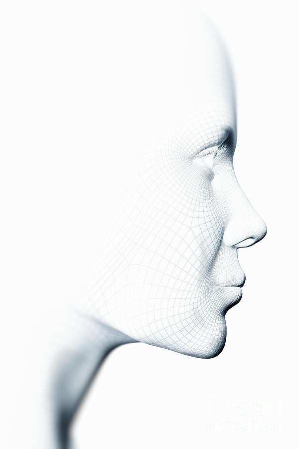 Wireframe Face Female Photograph by Science Picture Co