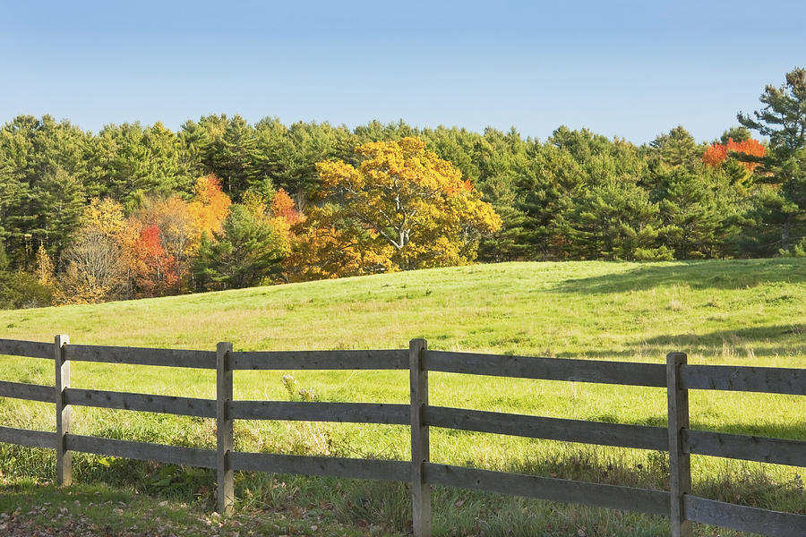 Wooden Farm Fence perfect wooden farm fence wire fencing rail ranch with farmranch