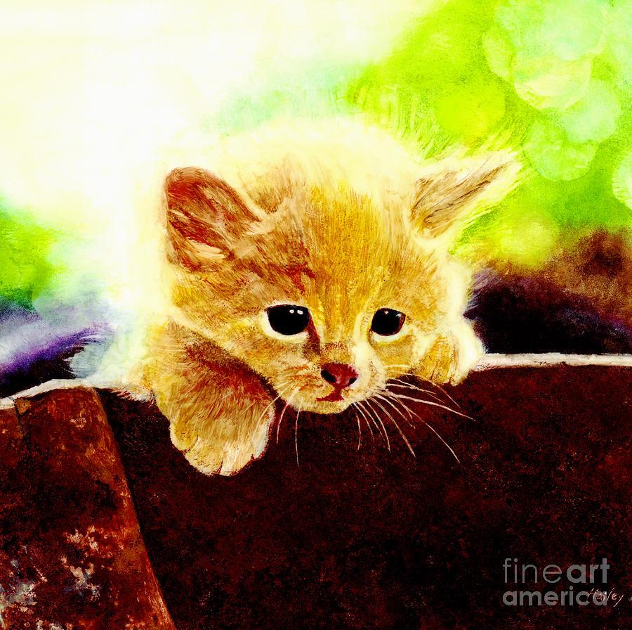 Kitten Painting - Yellow Kitten by Hailey E Herrera
