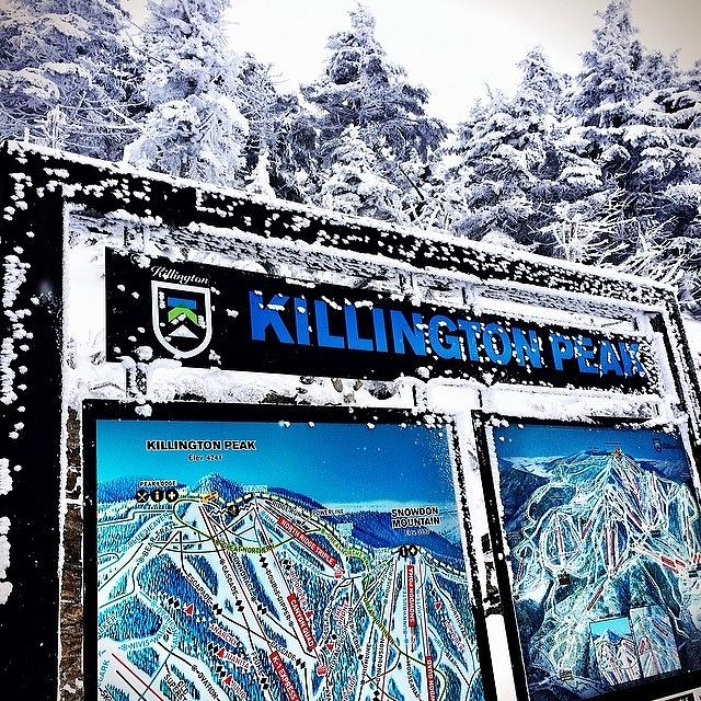 Pow Photograph - 20 Inches Of Fresh #pow. #vt by The Fun Enthusiast