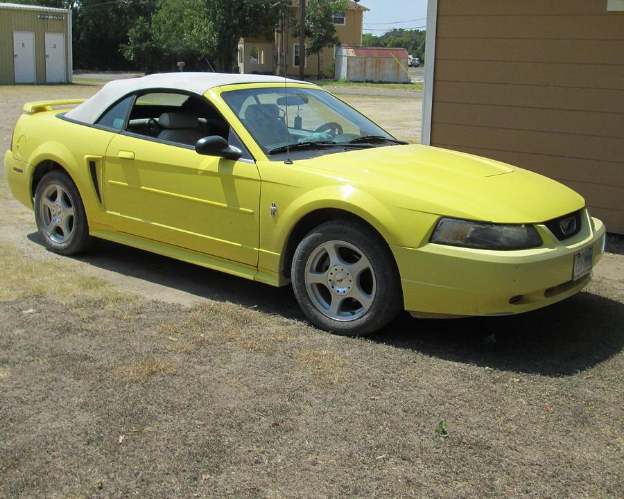 Cars Photograph - 2003 Mustang by Rosalie Klidies