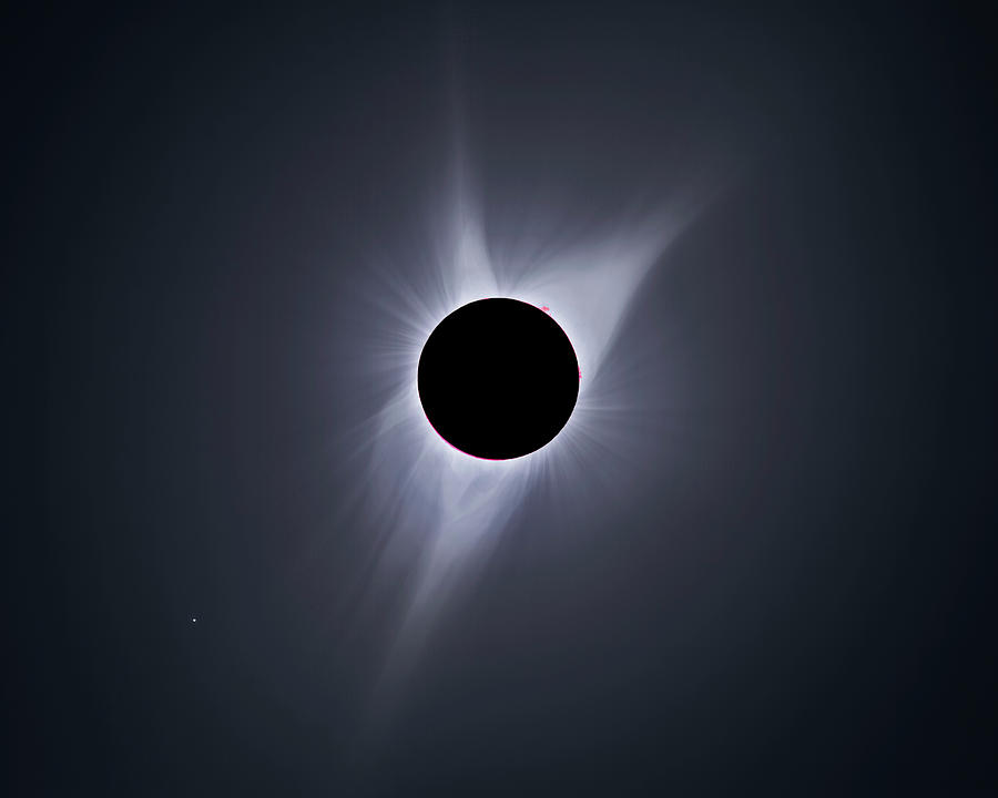 Sun Photograph - 2017 Total Solar Eclipse by Tony & Daphne Hallas/science Photo Library