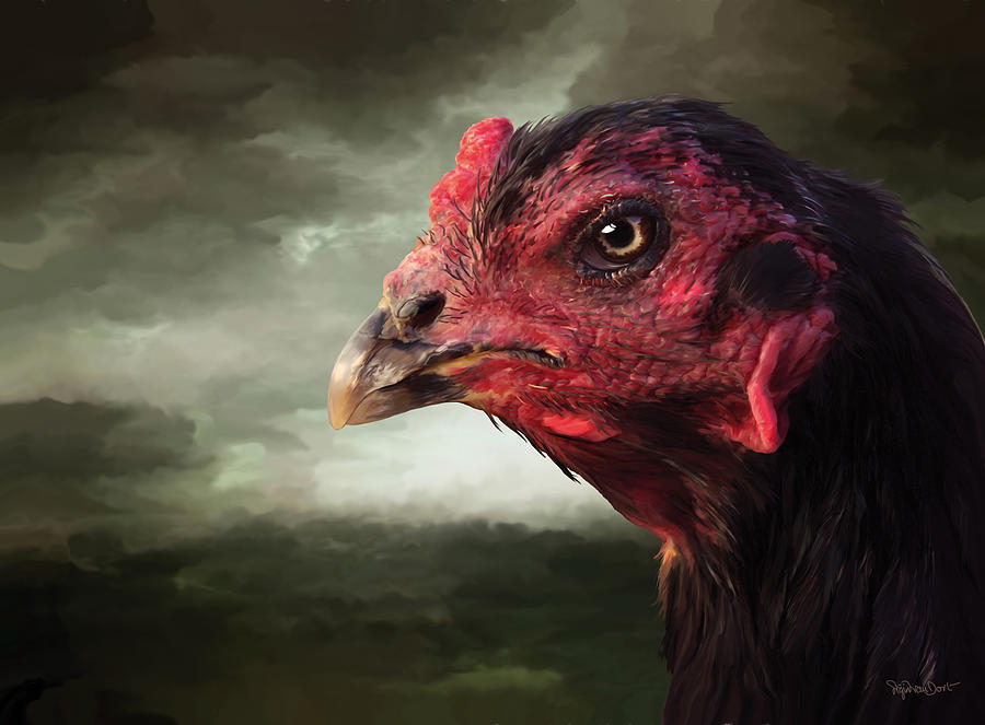 Chicken Digital Art - 22. Game hen by Sigrid Van Dort