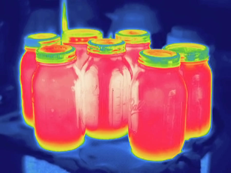 Thermography Photograph - Thermogram by Science Stock Photography