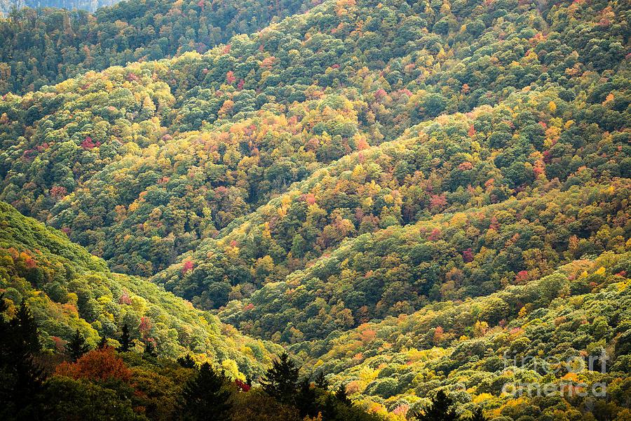 Blue Ridge Parkway Photograph - 2678 Blue Ridge Parkway by Stephen Parker