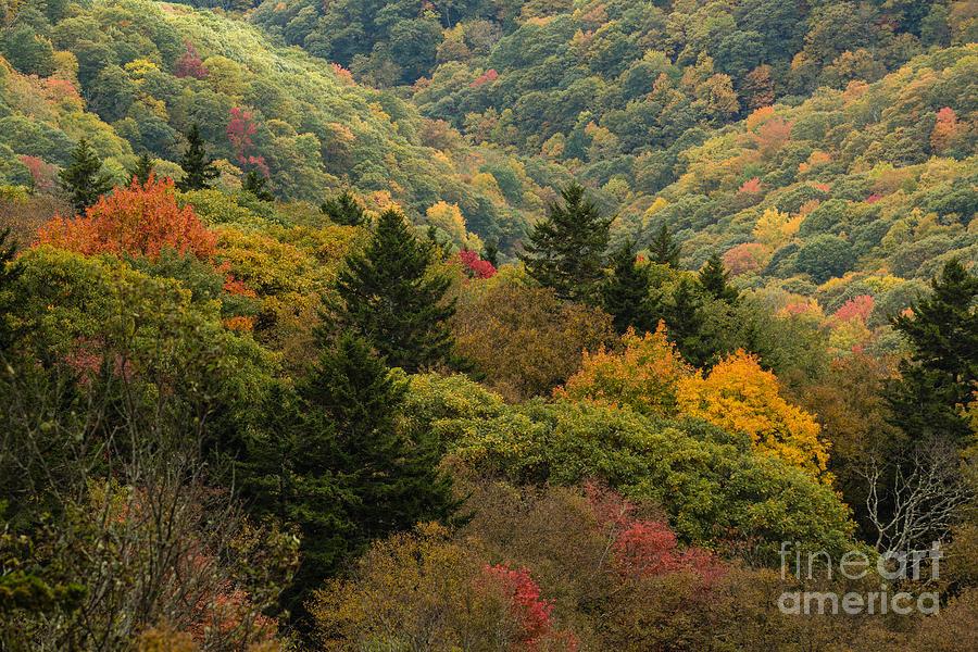 Blue Ridge Parkway Photograph - 2681 Blue Ridge Parkway by Stephen Parker