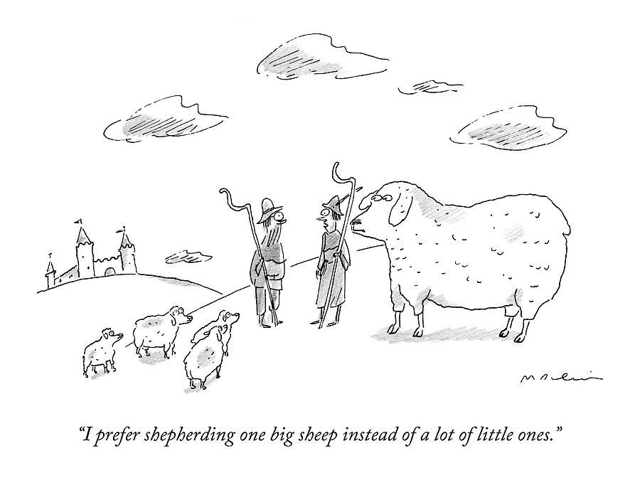 I Prefer Shepherding One Big Sheep Instead Drawing by Michael Maslin