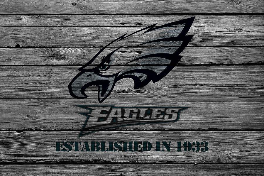 Eagles Photograph - Philadelphia Eagles by Joe Hamilton