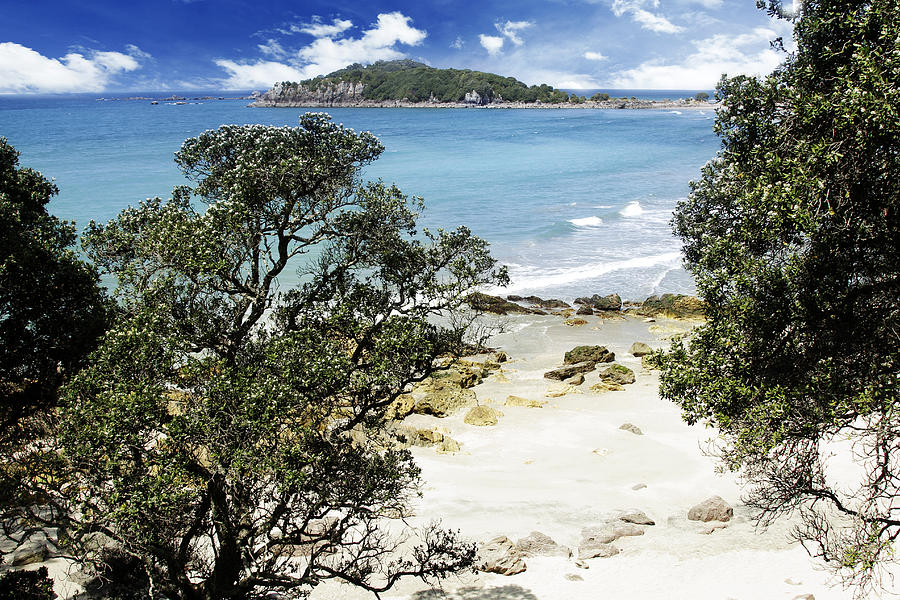 Beautiful Photograph - New Zealand by Les Cunliffe