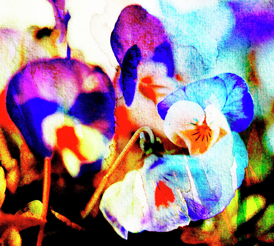 Abstract Watercolour Flowers Photograph by Kathy Collins