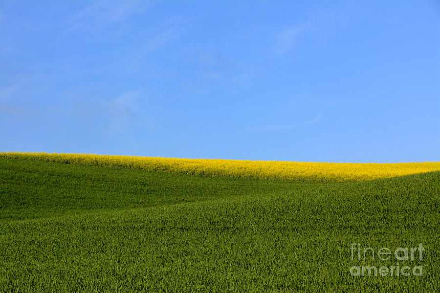 Agriculture Photograph - Agricultural Landscape. Auvergne. France. by Bernard Jaubert
