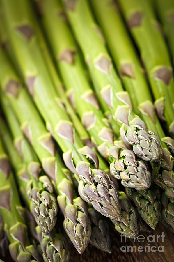 Asparagus Photograph - Asparagus by Elena Elisseeva