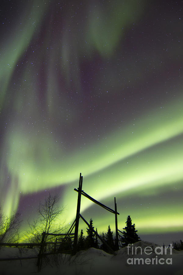 Vertical Photograph - Aurora Borealis Over A Ranch by Joseph Bradley