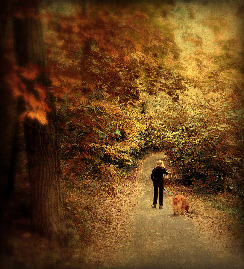 Nature Photograph - Autumn Stroll by Jessica Jenney