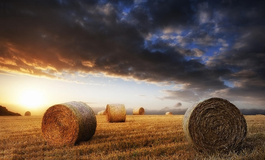 Landscape Photograph - Beautiful Golden Hour Hay Bales Sunset Landscape by Matthew Gibson