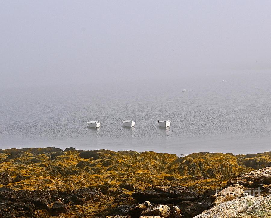 3 Boats Photograph